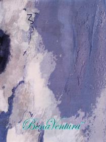 BonaVentura — Палантин  хлопковый, с печатным рисунком, вар.13